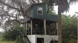 Thomas Hasley's treehouse_4832798