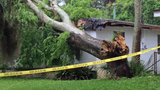 Photos: Volusia County storm damage - (1/3)