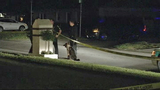 Photos: Man shot in Winter Park home - (7/8)