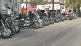 Photos: 18th Annual Leesburg Bikefest - (3/8)