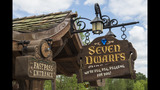 Seven Dwarfs Mine Train at Magic Kingdom - (9/12)