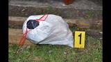 Photos: Evidence photos in Rachel Fryer case - (1/22)