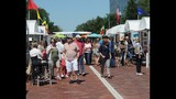 St. Johns River Festival of the Arts - (24/25)