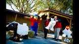 Legoland Florida's new DUPLO Valley - (4/6)