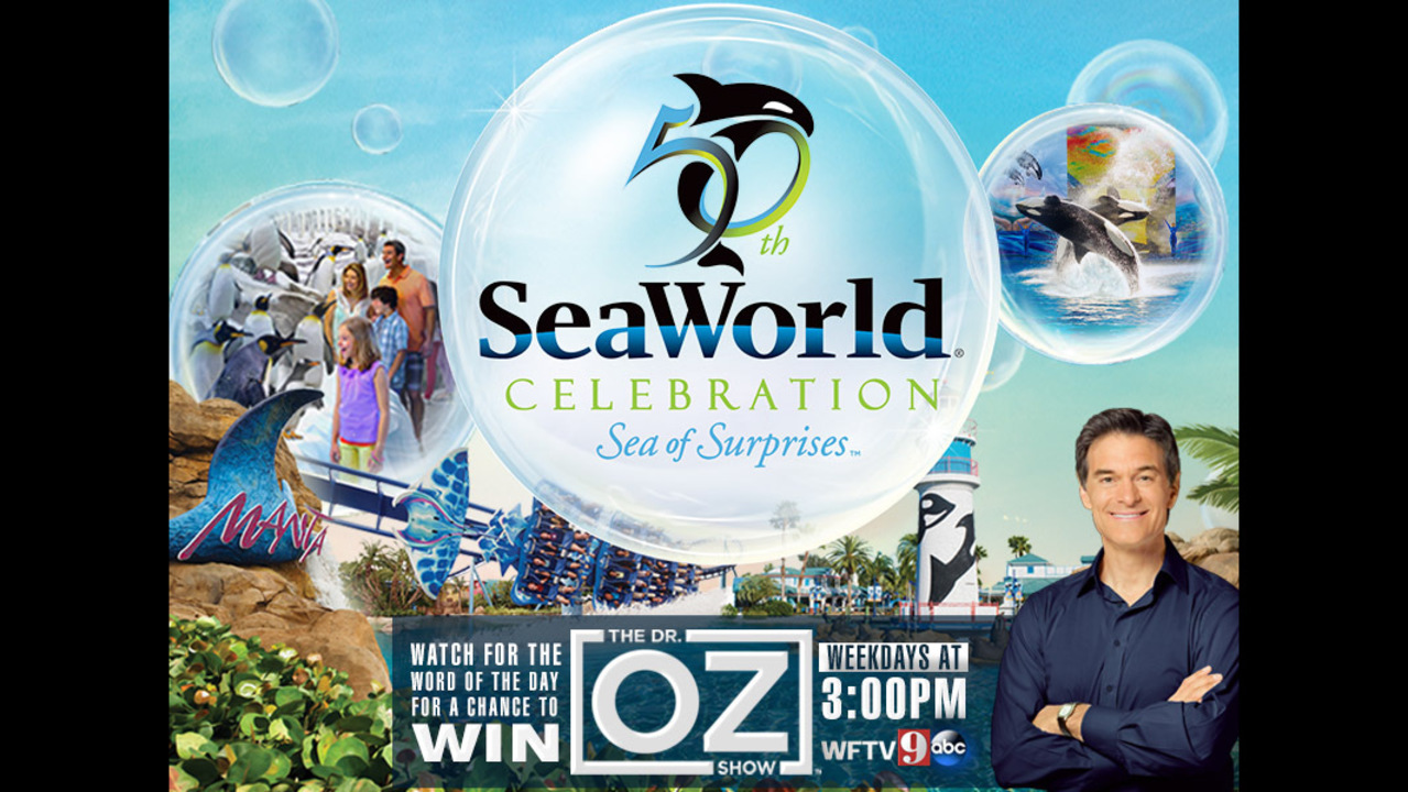 Enter for a chance to win a trip to SeaWorld! | WFTV