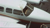 Photos: Bird strikes plane on landing… - (2/4)