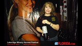 Lakeridge Winery's 24th Annual Harvest Festival - (2/25)