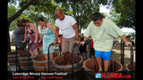 Lakeridge Winery's 24th Annual Harvest Festival - (13/25)