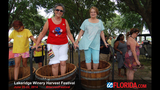 Lakeridge Winery's 24th Annual Harvest Festival - (1/25)