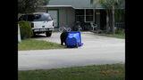 Photos: Tavares nuisance bear - (19/24)