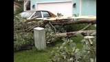 Photos: Volusia County storm damage - (3/25)