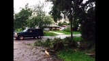 Photos: Volusia County storm damage - (1/25)