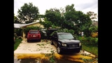 Photos: Volusia County storm damage - (21/25)