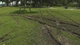 Photos: Driver tears up grass in South Daytona Beach - (5/7)
