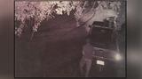 Photos: Driver tears up grass in South Daytona Beach - (7/7)