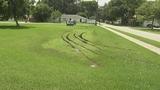 Photos: Driver tears up grass in South Daytona Beach - (6/7)