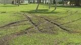 Photos: Driver tears up grass in South Daytona Beach - (1/7)
