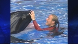 SeaWorld Trainer Working With Killer Whales - (12/15)