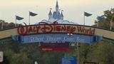 Disney World_6906240