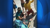An 18-year-old surfer in New Smyrna Beach left the water with some bite wounds Wednesday after an encounter with a shark.