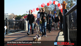 Paws in the Park 2016 - (13/17)