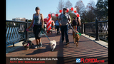 Paws in the Park 2016 - (3/17)
