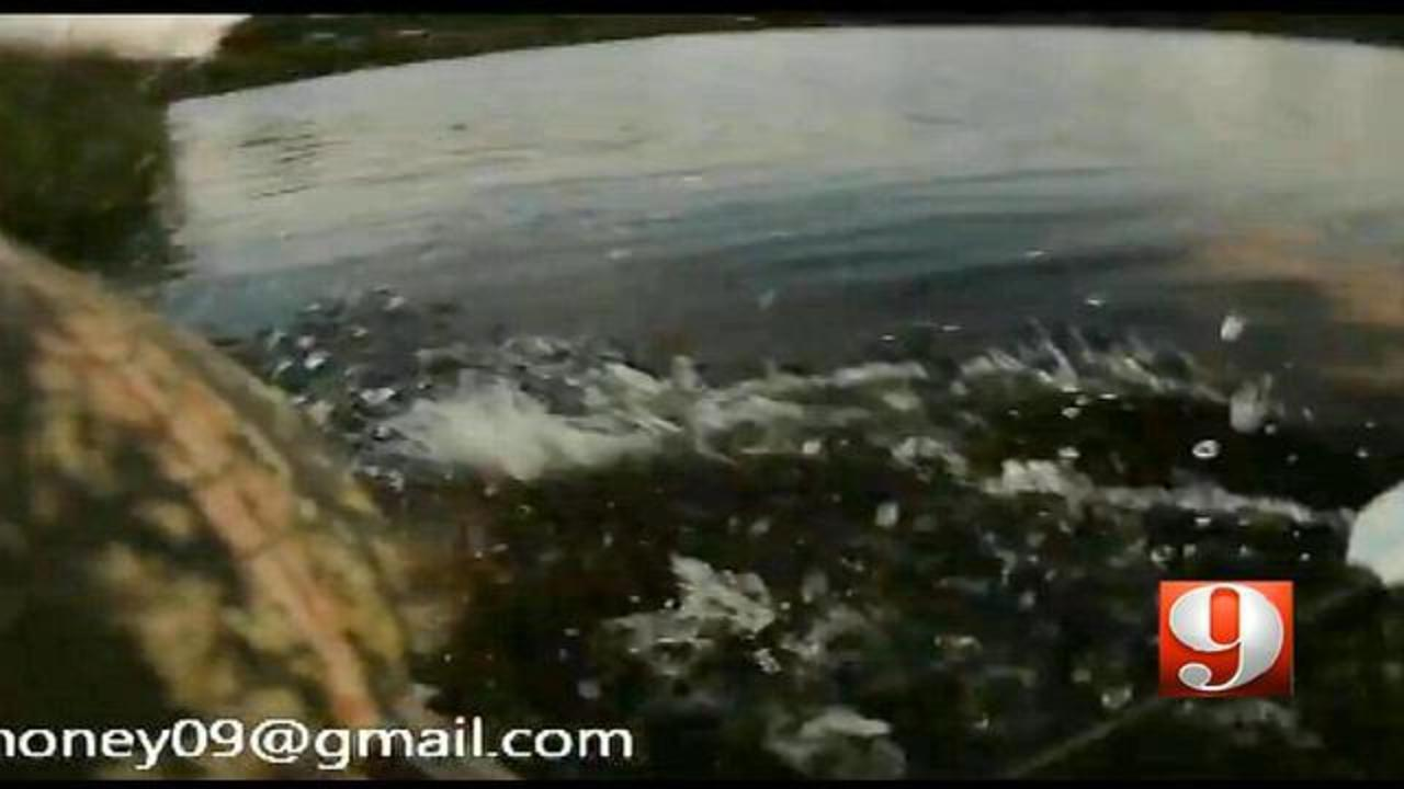 Helmet cam catches gator jumping out of water, ramming kayak