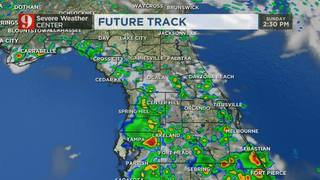 Scattered downpours and a few storms