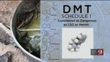 9 Investigates hallucinogenic drug used in local church