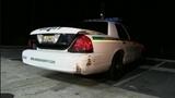 Car thieves target Cocoa dealership, crash into deputy