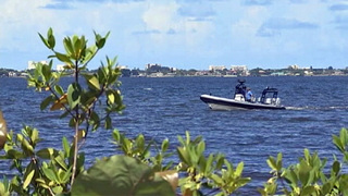 Millions of gallons of freshwater diverted from Indian River Lagoon