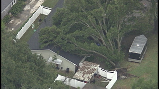 Trees fall on homes in Winter Garden; strong wind gusts reported