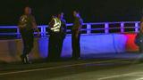 Police: Man beats wife, injures motorist before jumping off Daytona Beach bridge