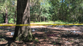 Skeletal remains found near Dunnellon