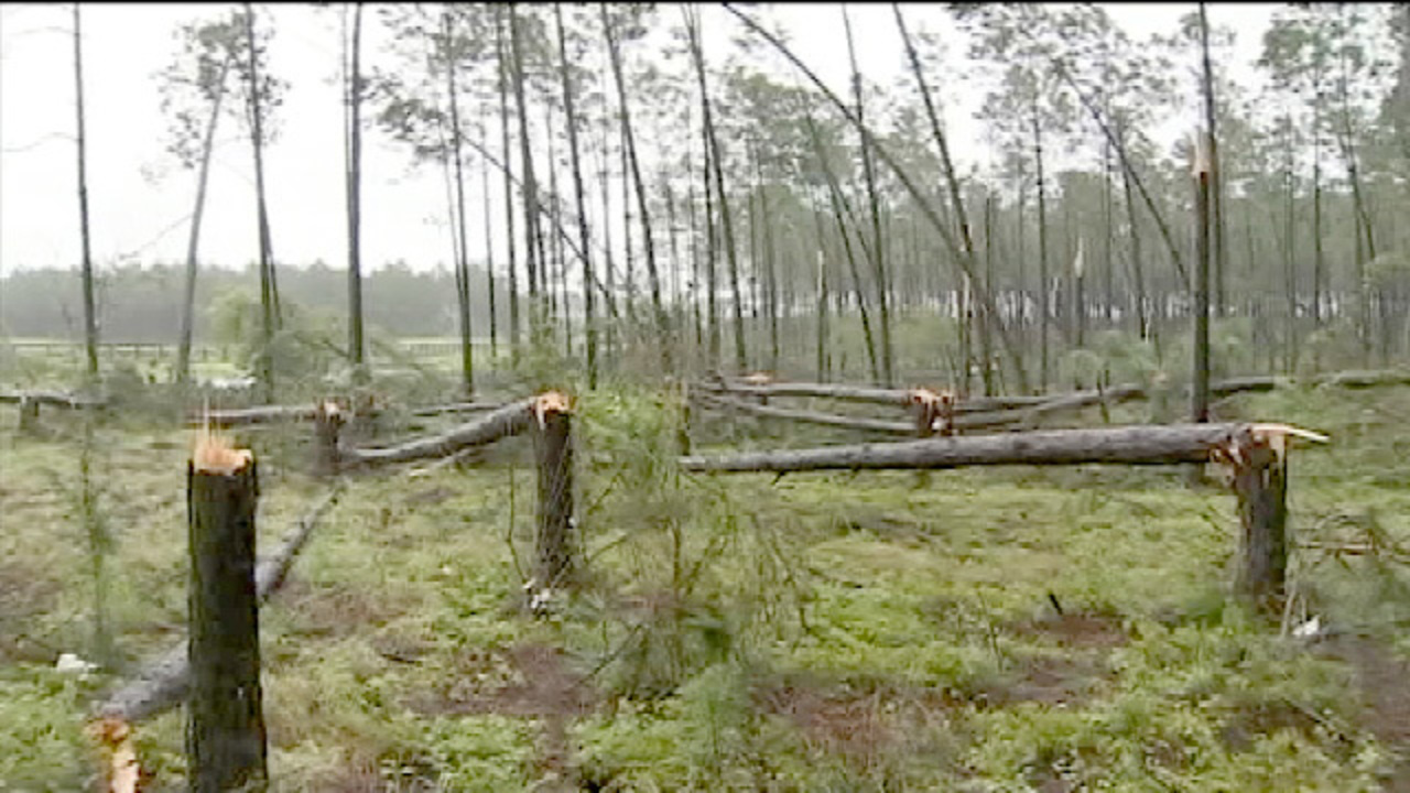 nws ef 0 tornado touched down near winter garden as hermine moved