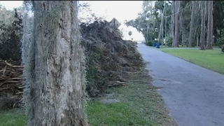 Residents on private roads have longer wait to get debris picked up
