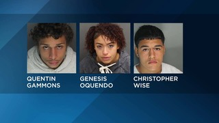 Three arrested in Orange County drive-by shooting, deputies say