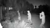 Tips pour in after police release surveillance footage of Mount Dora burglaries