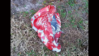 Balloon causes temporary power outage in Kissimmee