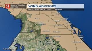 Windy Day Ahead!