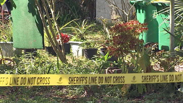 Homicide detectives investigate death of 80-year-old Brevard County ...