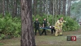 Deputies: Man, woman survive plane crash near Port Orange