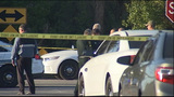 Photos: Volusia County deputies investigate… - (6/10)