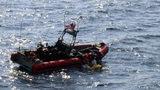 Photos: Coast Guard rescued sea turtles - (1/4)