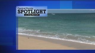 Central Florida Spotlight April 23: Drowning prevention