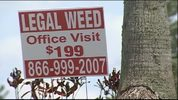 Signs in Clermont are advertising legal weed, but state officials say it's a scam.