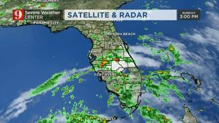 Tropical disturbance nearing Gulf of Mexico, rain event for Gulf states