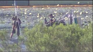 Deputies find body of car burglary suspect in Lake Sherwood