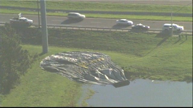 Hot air balloon lands in gator-infested Florida pond