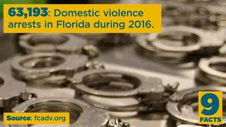 Video: 9 Facts about domestic violence
